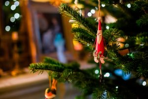 the holiday Christmas tree