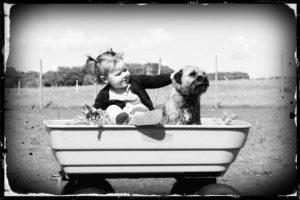 buddy system 4 with dog