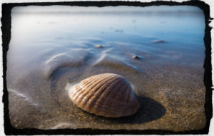 God teaches gentleness - even through a shell